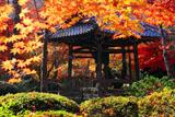 京都勝持寺 紅葉の鐘楼