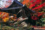京都勝持寺 ススキと紅葉の鐘楼
