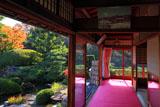 京都正法寺 宝生殿から黄葉の宝生苑