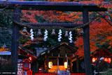 京都野宮神社 黒木鳥居越しの紅葉の境内