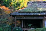 滝口寺 錦秋の本堂