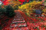 京都直指庵の与謝野晶子の碑