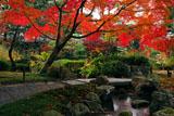 城南宮平安の庭の紅葉