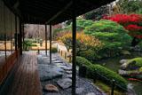 城南宮楽水軒と紅葉