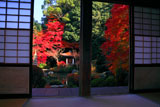 毘沙門堂 梅の間から紅葉の晩翠園