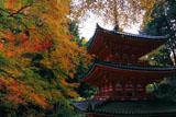 紅葉と岩船寺三重塔