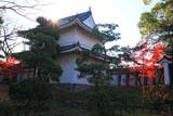 二条城東南隅櫓と紅葉