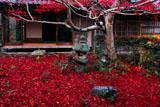 京都厭離庵 庭園の散紅葉と書院
