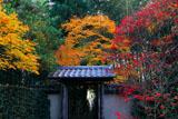 京都厭離庵 紅葉の山門