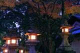 松尾大社 常夜燈と紅葉