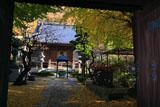 藤沢常立寺 山門越しに黄葉の境内