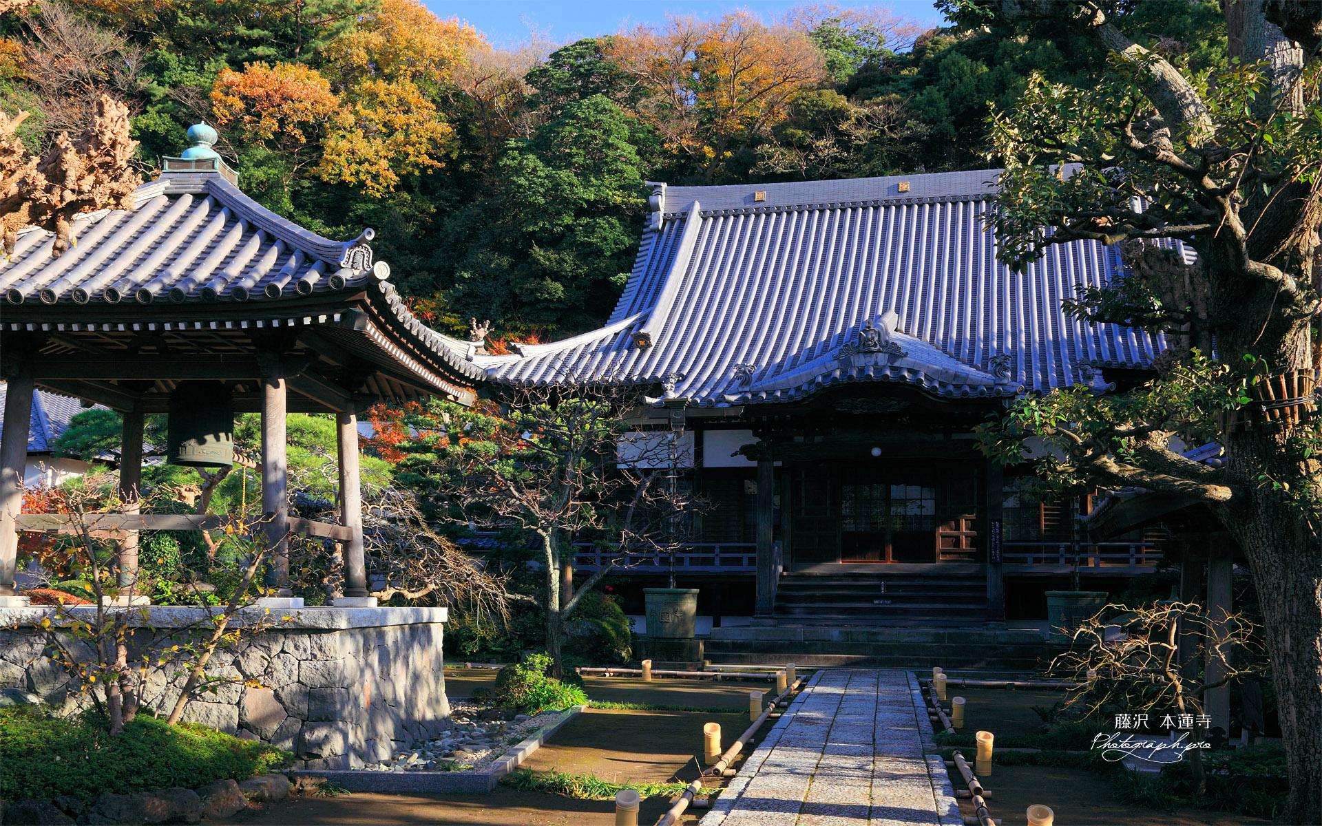本蓮寺 鐘楼と本堂