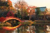 称名寺 紅葉の浄土式庭園