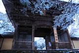雪の華と神護寺山門