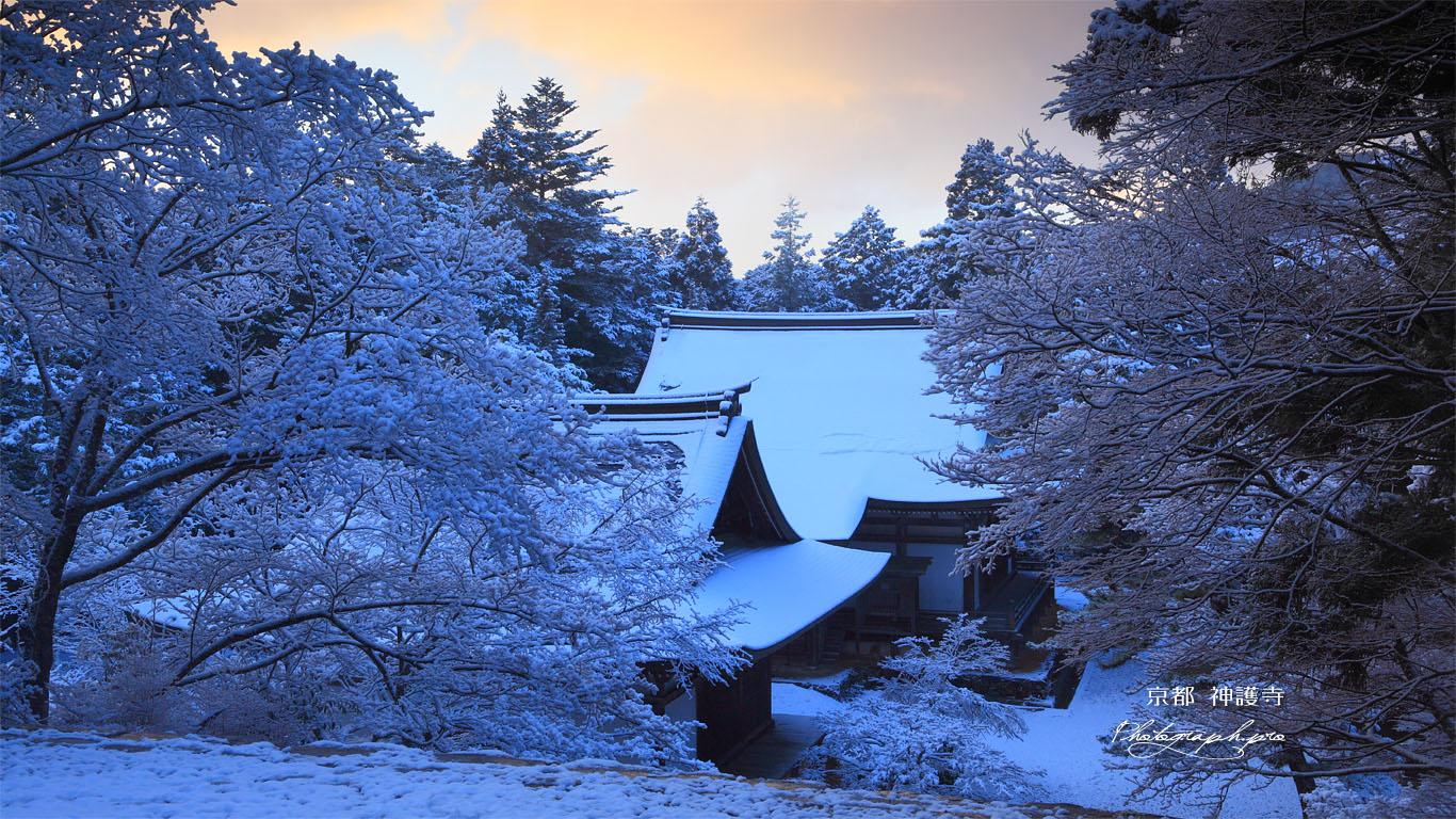 神護寺 雪の五大堂と毘沙門堂 壁紙