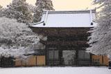 雪降る神護寺山門