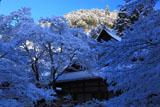 雪の西明寺客殿