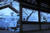 渡廊越しの雪の西明寺庭園