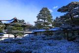雪化粧の松と仁和寺勅使門