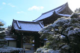 仁和寺 雪降る本坊表門と仁王門