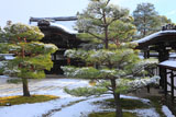 仁和寺 雪の勅使門と皇族門