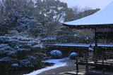 仁和寺 雪舞う宸殿と北庭