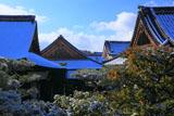 雪の仁和寺御殿