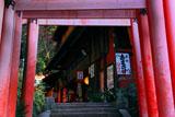 伏見稲荷大社 鳥居越しの茶屋