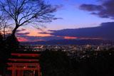 伏見稲荷大社 四つ辻からの夜景