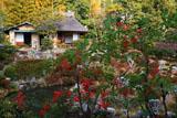 京都等持院 南天と清漣亭