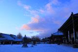 雪化粧の西本願寺境内