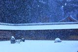 龍安寺 雪降る石庭