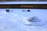龍安寺 雪化粧の石庭