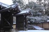 雪舞う清和院御門