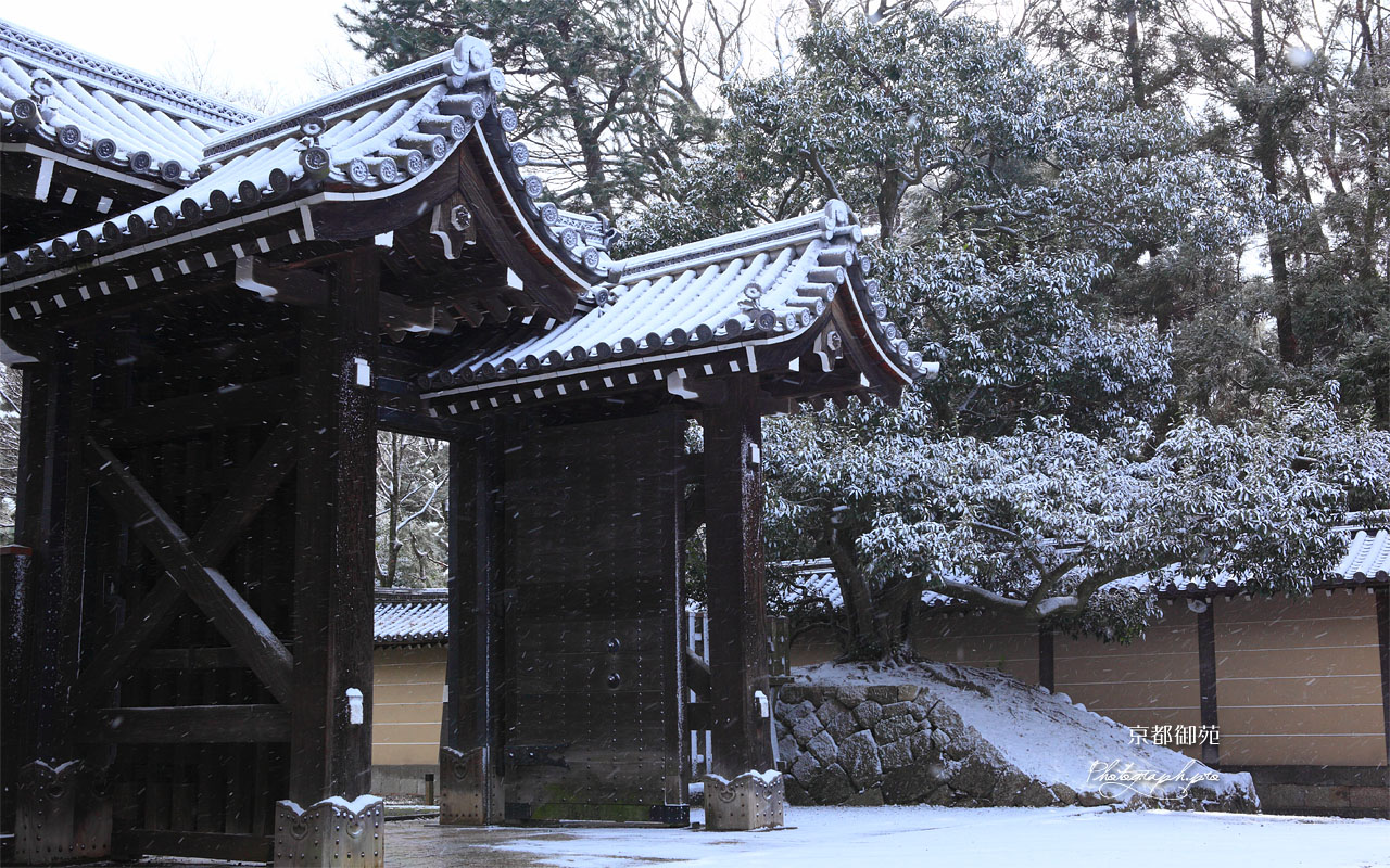雪舞う清和院御門 壁紙