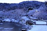 円山公園 雪化粧の朝