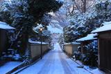 雪化粧したねねの道