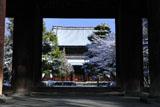 建仁寺 三門越しの雪景色の法堂