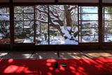 宝泉院 雪化粧の額縁庭園