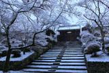 雪化粧の毘沙門堂薬医門
