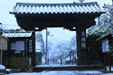 南禅寺金地院 雪の総門
