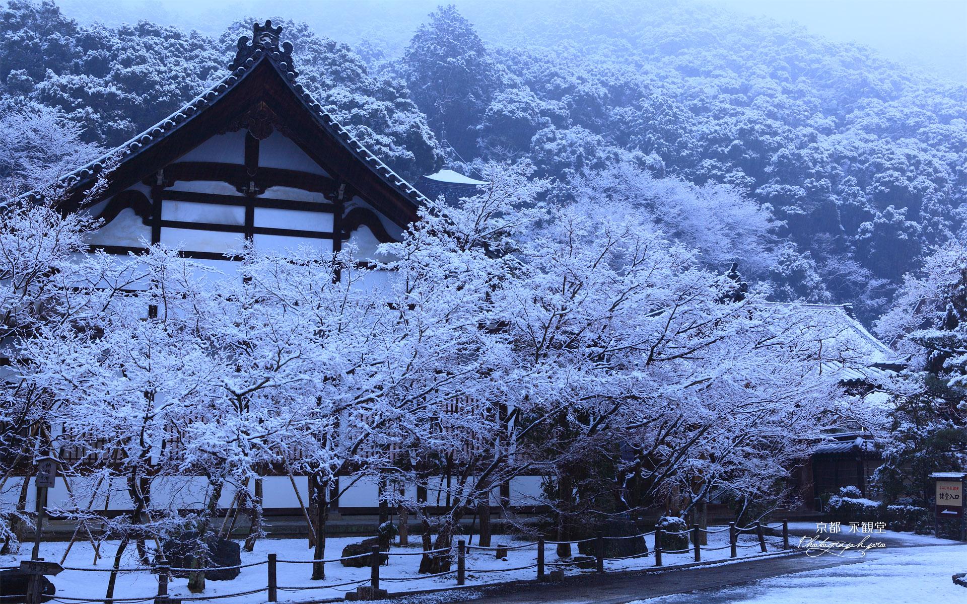 雪化粧した永観堂