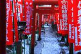 佐助稲荷神社 斑雪の参道