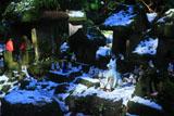 佐助稲荷神社 白狐のボス
