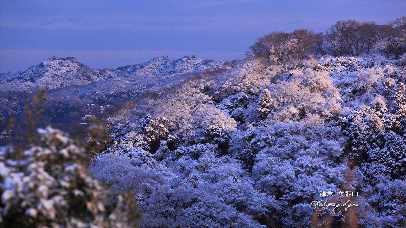 雪化粧した鎌倉アルプス 壁紙