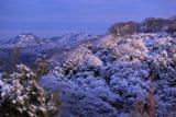 雪化粧した鎌倉アルプス