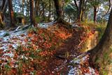鎌倉 斑雪と大切岸