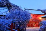 下鴨神社 雪化粧の楼門