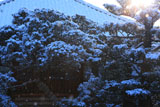 京都常林寺 雪の本堂