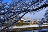 下鴨 雪枝越しの宮河町